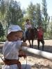 Ми козацького роду