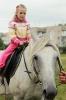 Виступ гостей та коней